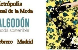 Cartel Momad Metropolis Logo