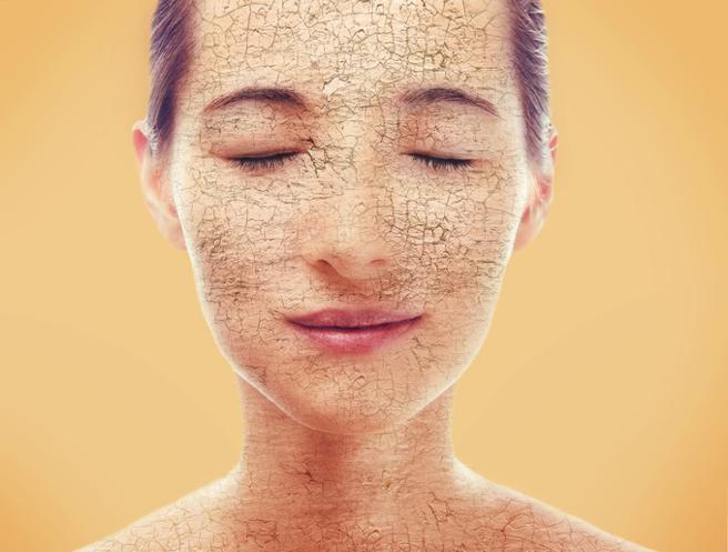Imagen la piel y la importancia de cuidarla blog